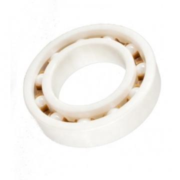 5203-LL ZRO2 T9 LD - Double Row Full Ceramic Bearings